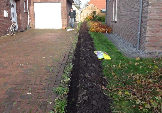 Plantgeul uitgegraven